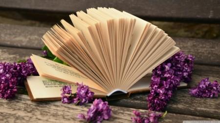 open_book_macro_2-wallpaper-1280x720